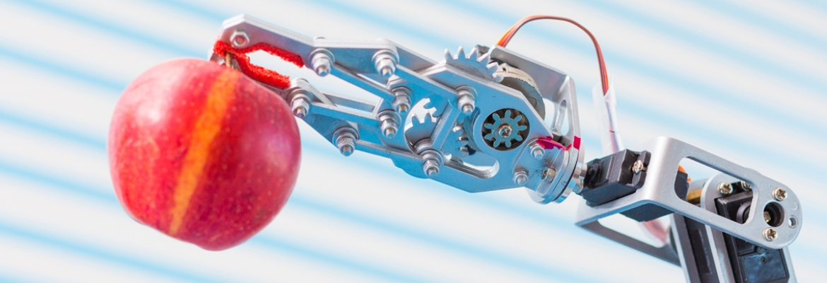 Developing Robotics in an Agile Environment - Questers