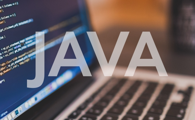 """Java has gone a very long way since its first appearance until today"" - Questers"